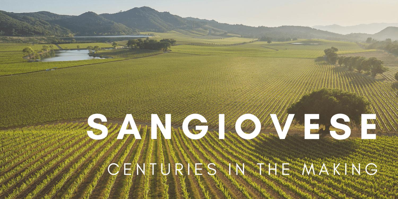 Sangiovese From The Antinori Family